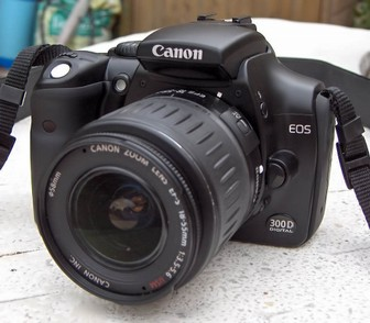 Canon 300D Camera - Newcastle and North East Wedding Photographer